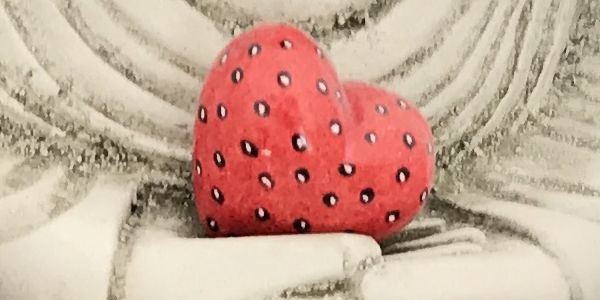 Das Herz neu entdecken